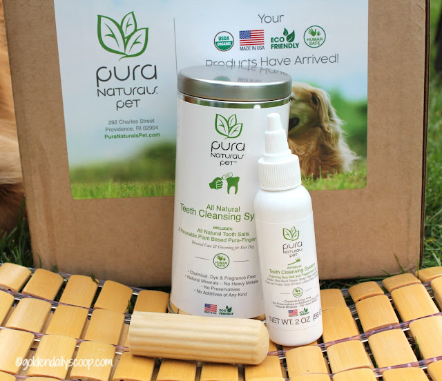 organic eco friendly teeth cleansing system for dogs