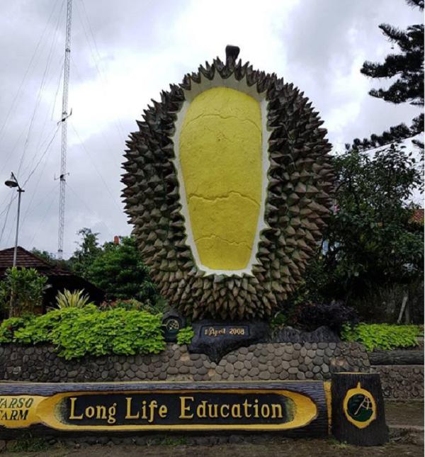 temoat wisata alam Warso Farm Bogor