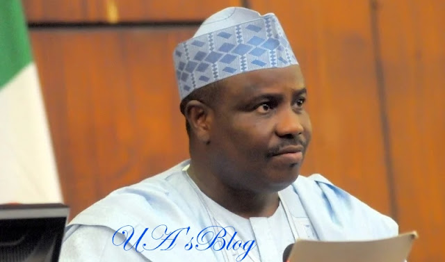How Tambuwal planned to overthrow Buhari – President's aide, Onochie