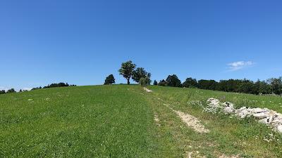 Die Steine rechts bilden die Kantonsgrenze Jura-Bern