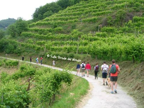 trekking tra le colline del prosecco