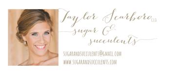 "href=""http://www.sugarandsucculents.com"" target=""_blank"""
