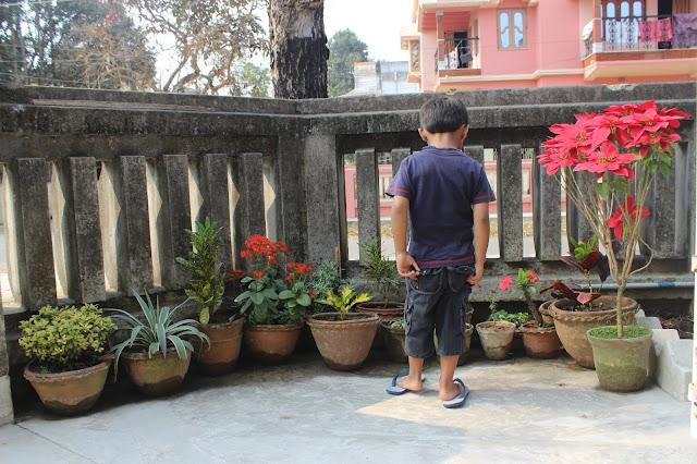 Sourajit Saha's Nephew Rick 27
