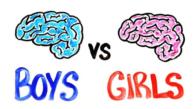 من الأذكى الإناث أم الذكور؟