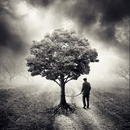 02-Surreal-Photo-Manipulation-Sarolta-Bán-www-designstack-co