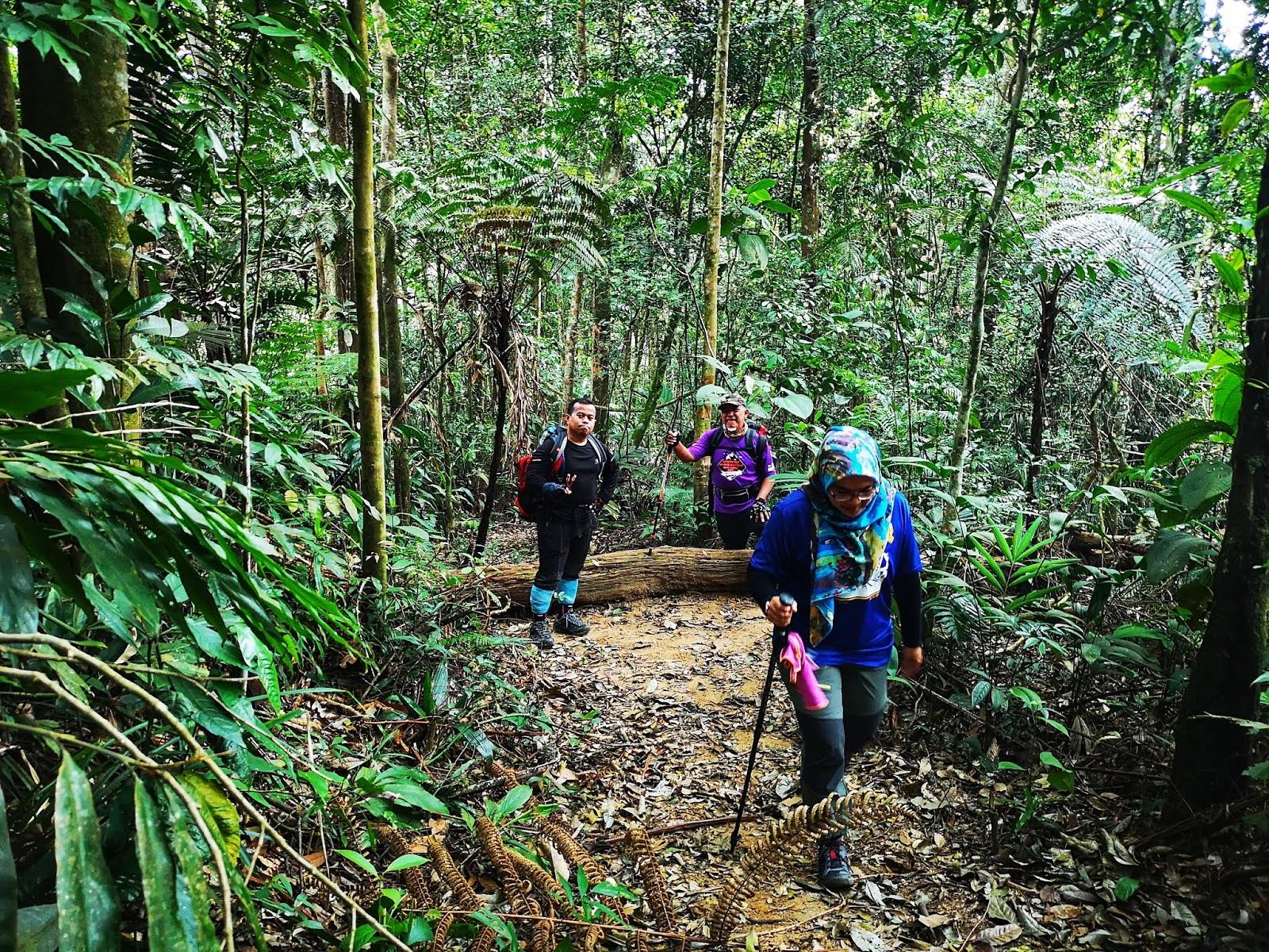 Menuju ke puncak Gunung Berembun 3