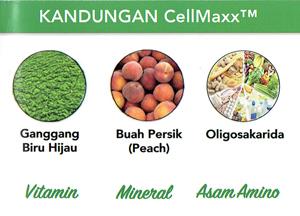 Harga Obat Herbal CellMaxx