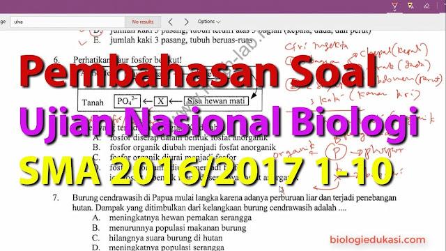 Soal Online Ujian Nasiona Biologi Kelas 12 IPA