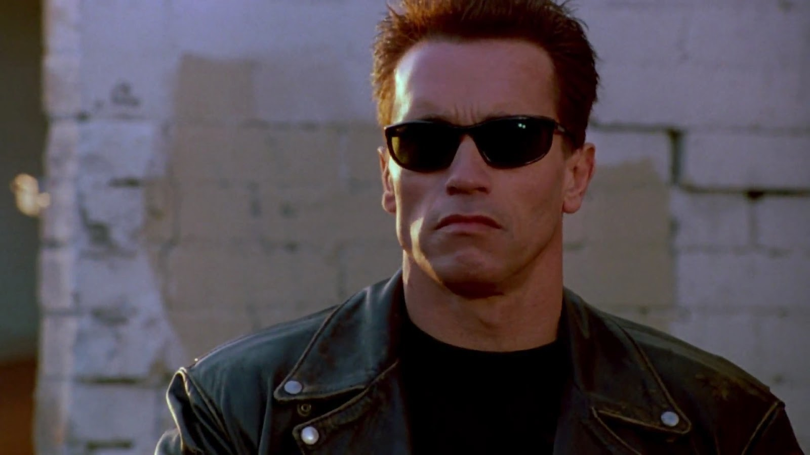 Arnold Schwarzenegger On Board For Terminator Reboot And Conclusion Of The Franchise.