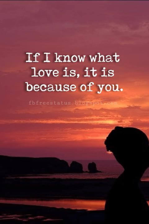 Happy Valentines Day Quotes, If I know what love is, it is because of you.