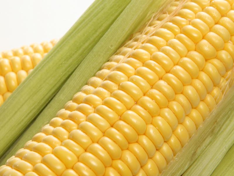 Menikmati Kopi dengan Tambahan Mentega dan Minyak Kelapa jadi Tren Baru