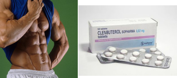 Fat loss pill bodybuilding