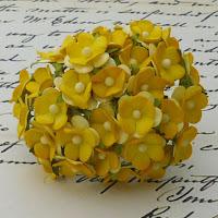 https://www.essy-floresy.pl/pl/p/Kwiatki-Sweetheart-Blossom-dwutonowe-zolte/956