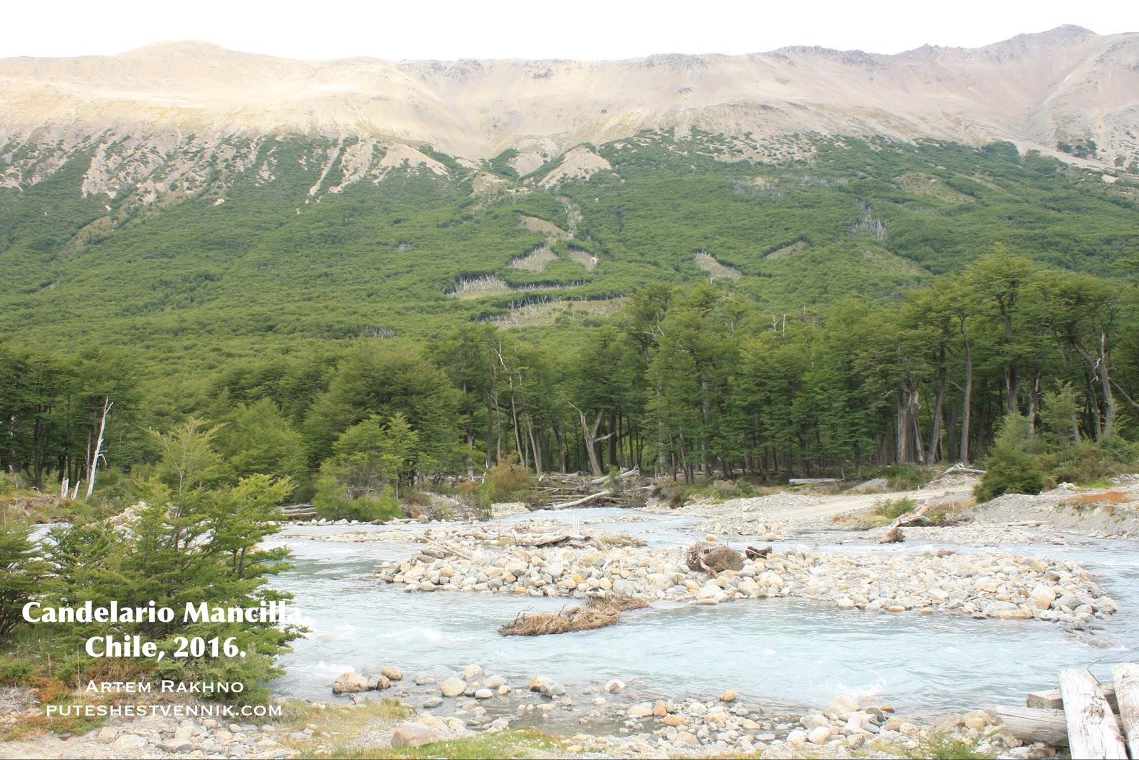 Горная река и лес на границе Чили и Аргентины