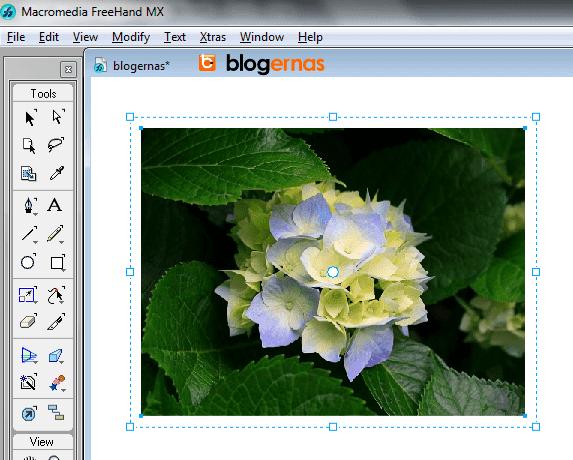 Cara Rotasi Image Objek pada Macromedia Freehand