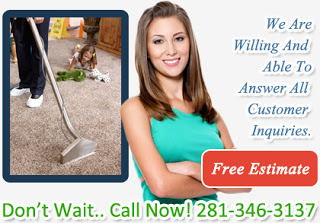 professional carpet cleaners Stafford TX