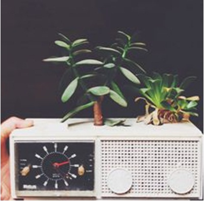 Perabot elektronik jadi pot tanaman