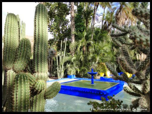 Jardin Majorelle Marrakech Marruecos Leer Viajar Y Compartir