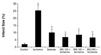 図:バコパモニエラの脳梗塞治療効果