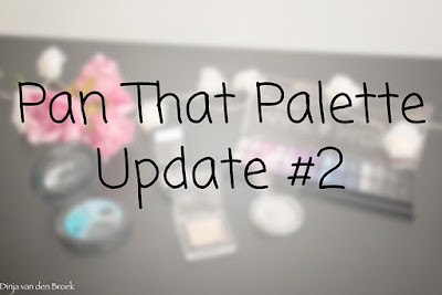 Pan That Palette Update #2