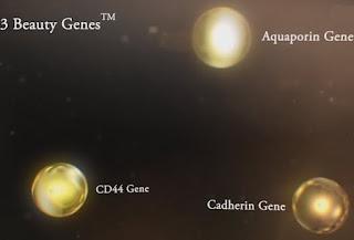 Στοχεύει σε 3 γονίδια ομορφιάς γονίδιο αντιξηρότητας,  το γονίδιο της αναζωογόνησης των κυττάρων, το δομικό γονίδιο