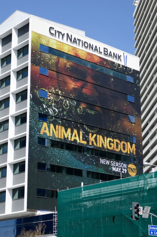 Giant Animal Kingdom season 3 billboard