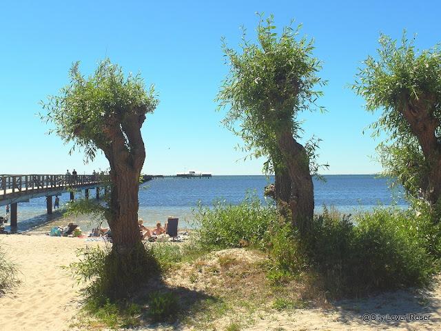 Skåne - Bjärred