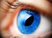 İnsanların Gözleri Neden Renkli Olur?
