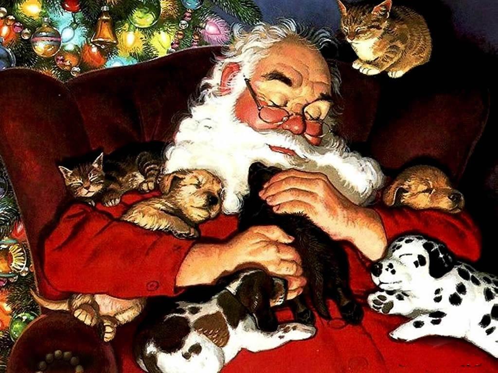 feliz navidad perros y gatos