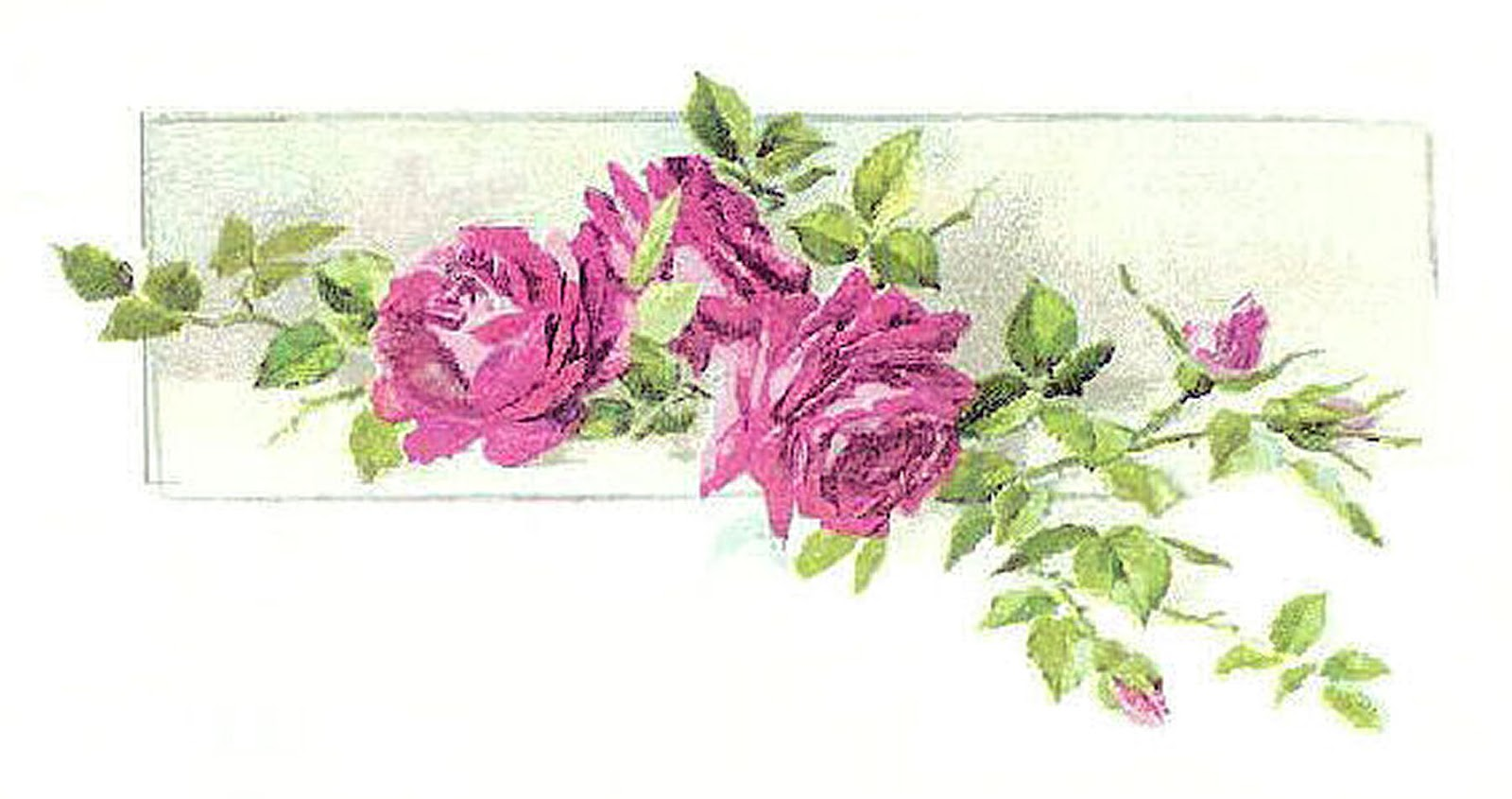 Antique Images: Vintage Flower Clip Art: Pink Rose