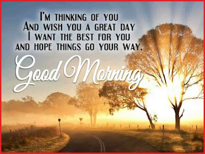 rising sun behind the trees with good morning wishes whatsapp
