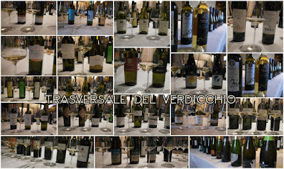 verdicchio degustazione trasversale wineblog