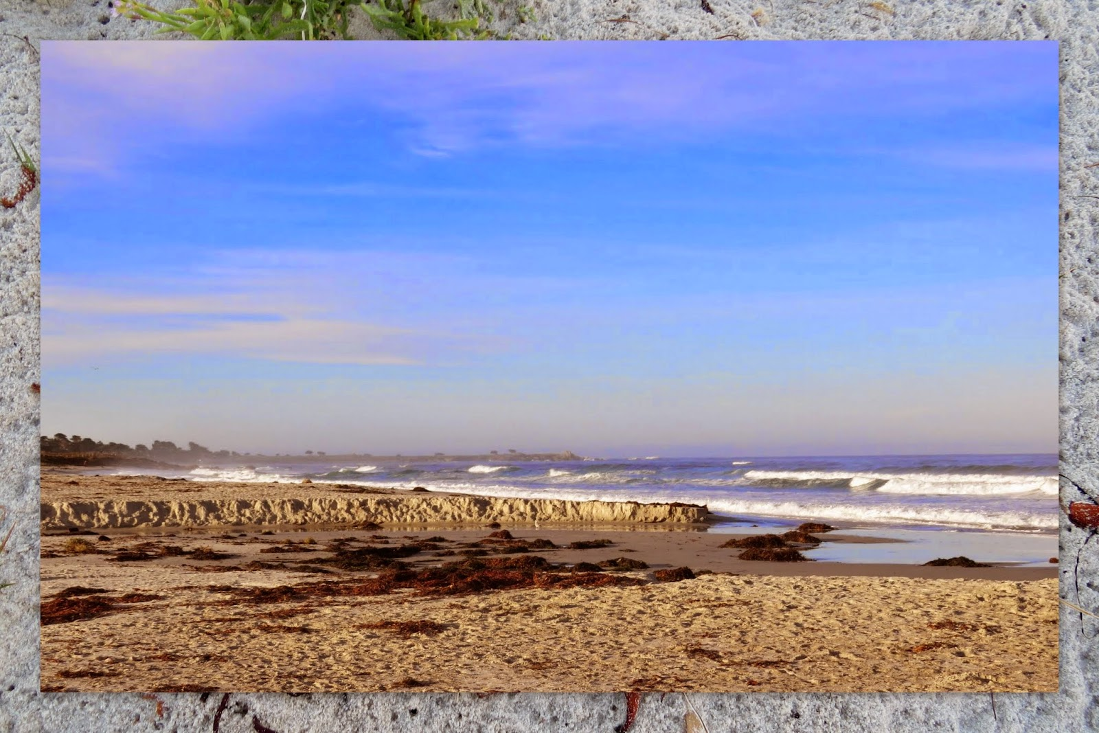 Beach at Asilomar