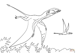 Pterosaurs Coloring Pages