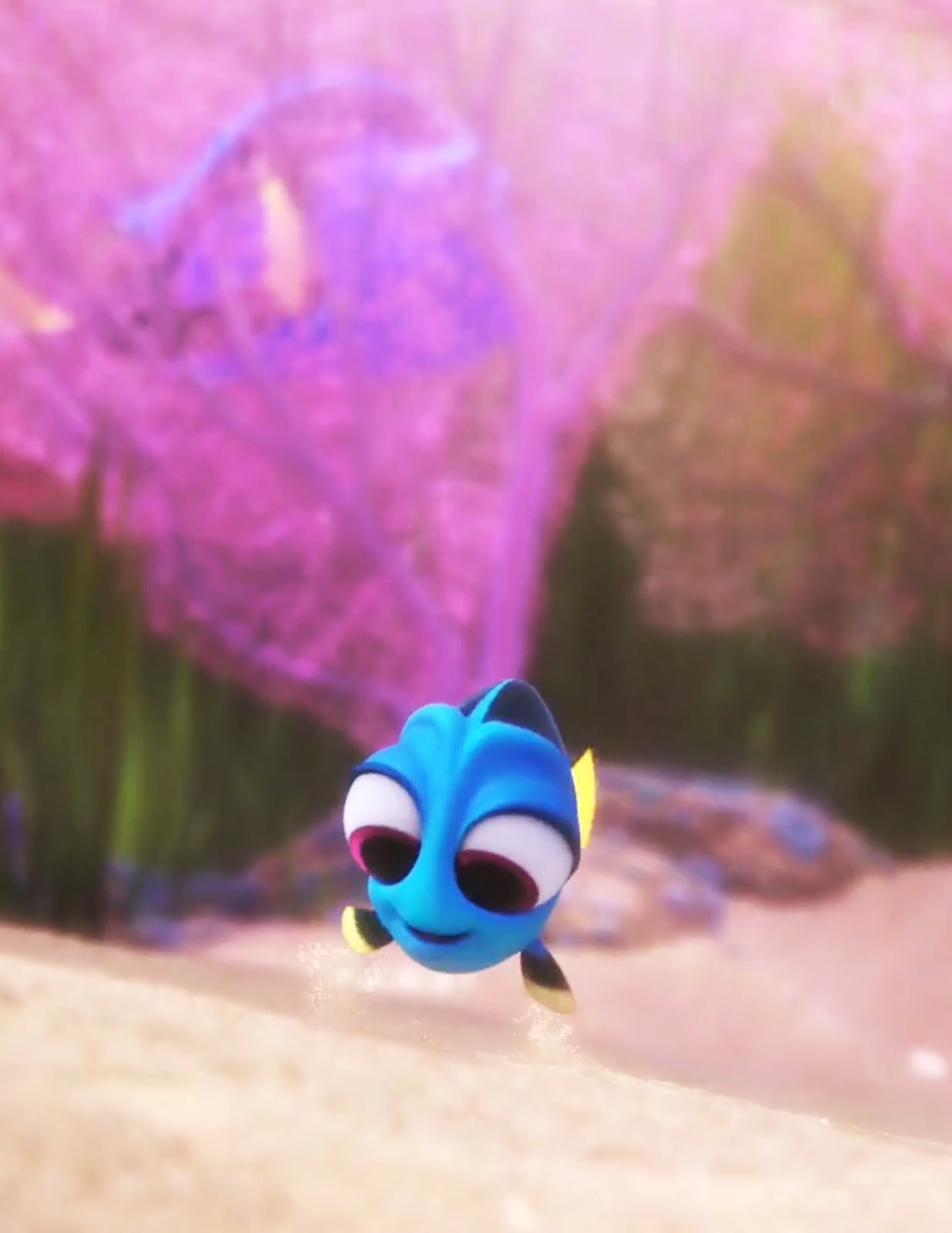baby dory wallpaper - photo #15