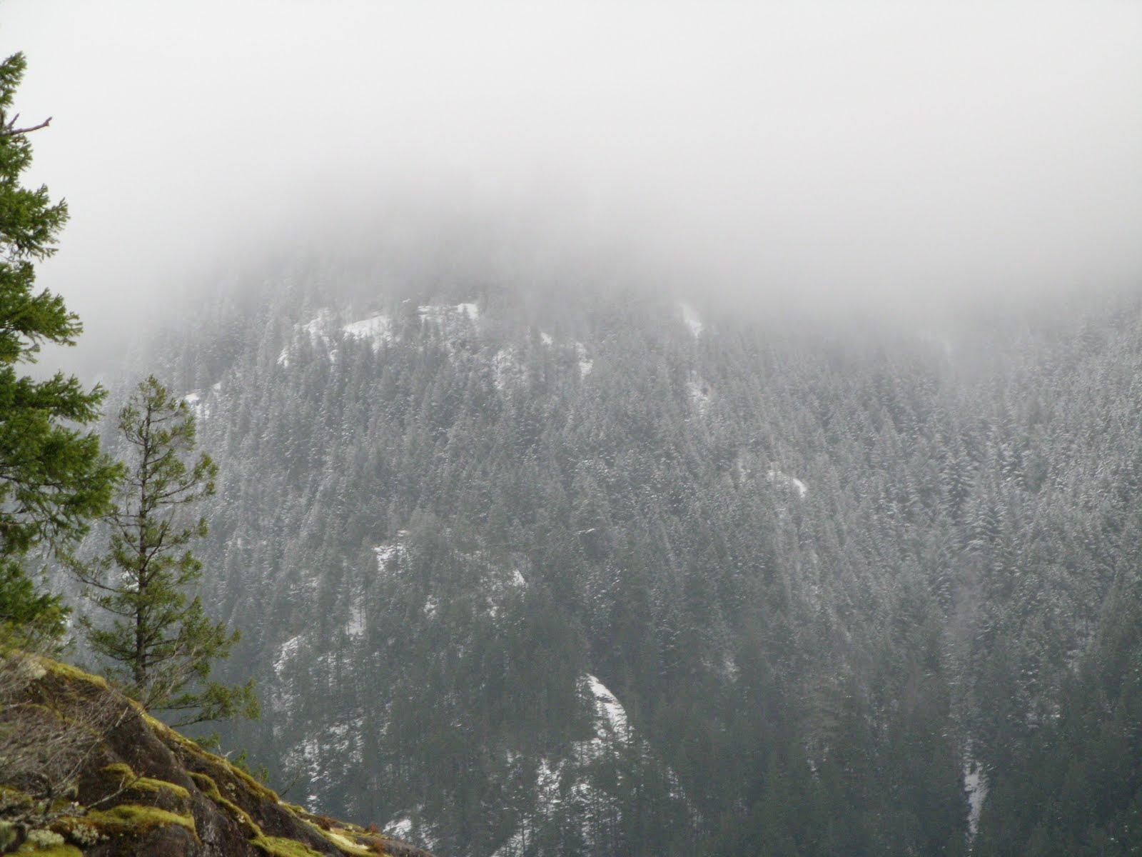 Powell River Books Blog: Snow Above, Rain Below