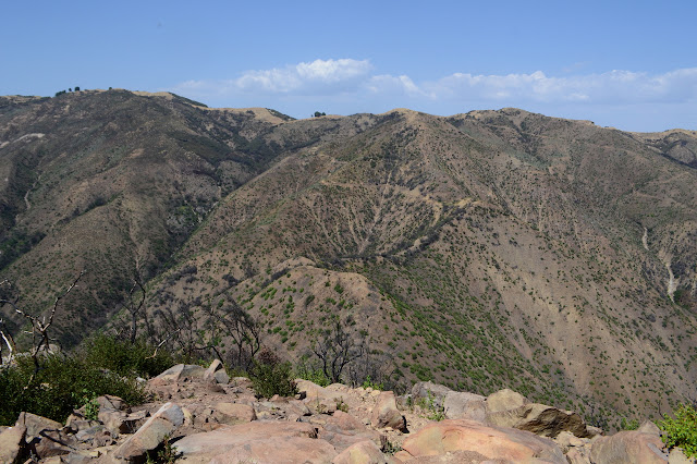 the main line of the Santa Ynez Mountains above