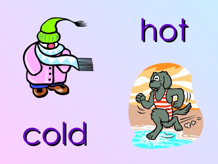 preschool opposites theme ideas for early childhood opposite preschool theme 320