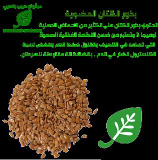 بذور الكتان العضوية من اي هيرب  Frontier Natural Products, Organic Whole Flax Seed, 16 oz (453 g)