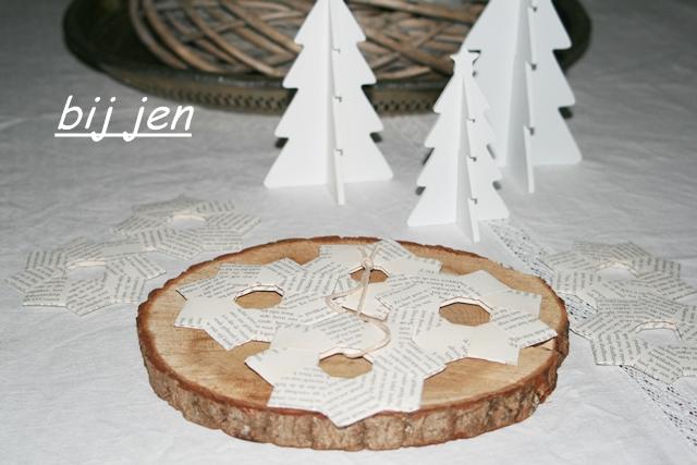 Weihnachtsstern, Christmasstar, Kerstster