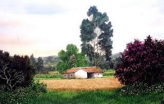 imagenes-oleo-vistas-colombianas