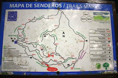Senderos del Bosque Nuboso de Monteverde