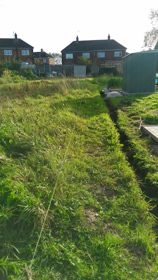 Allotment Update - October 19th