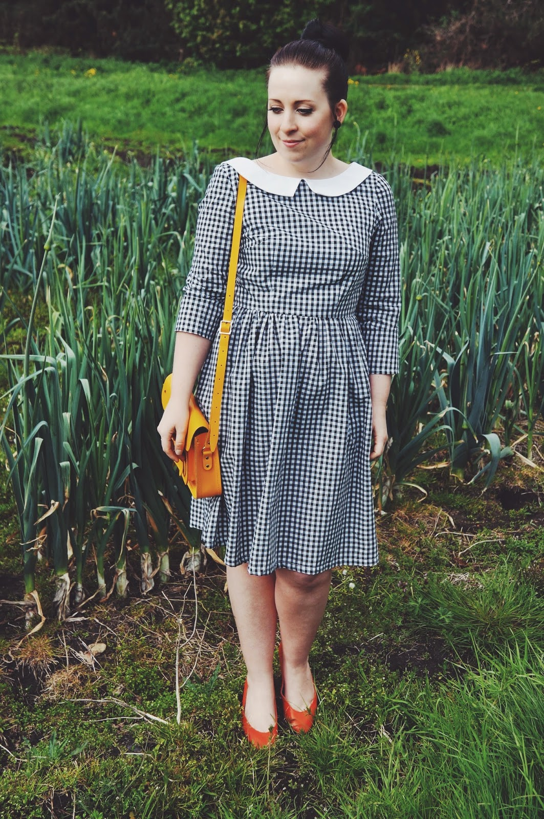GINGHAM AND BRIGHTS