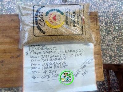 Benih Padi Pesanan    HENDRIYANTO Indramayu, Jabar.    Benih Sebelum di Packing.