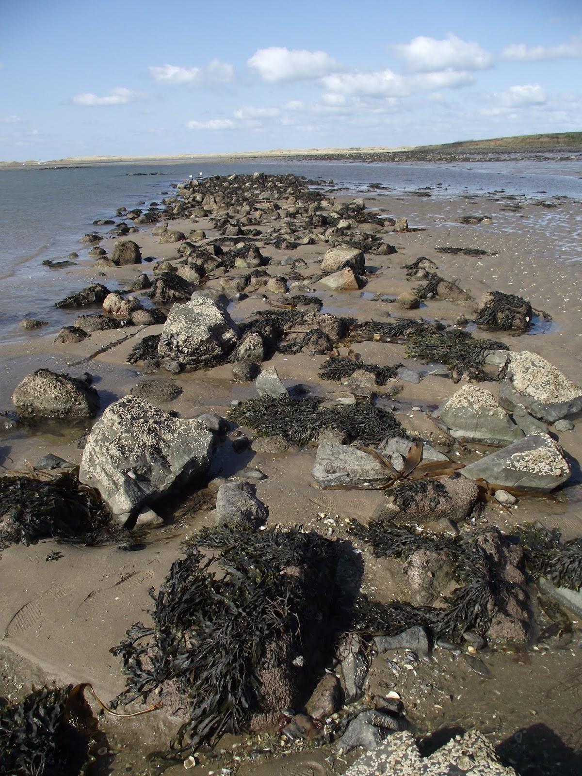 Outlandish Knight: Fish trap on Holy Island?