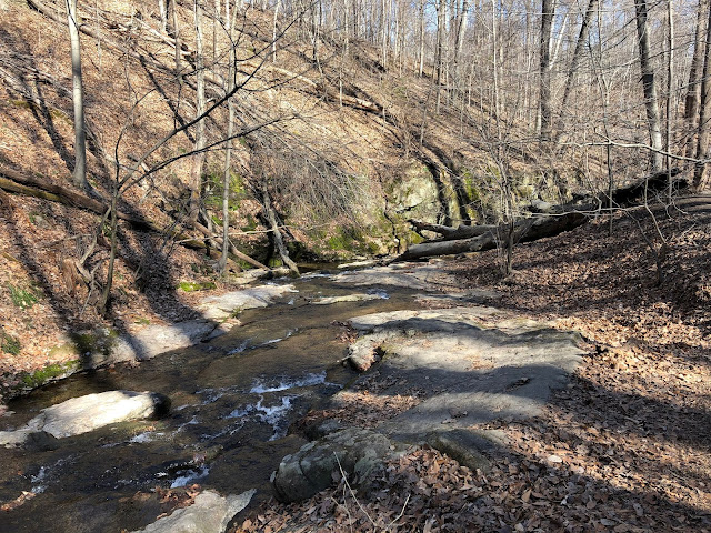 Taking a moment to pause along the meandering stream in Patapsco Valley State Park, Maryland