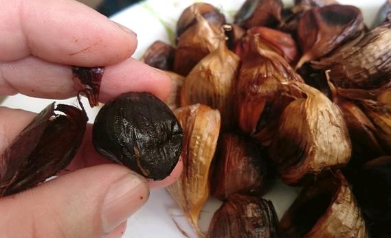 cara membuat bawang hitamblack garlic