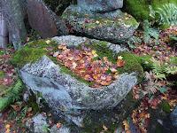 磐船神社の紅葉