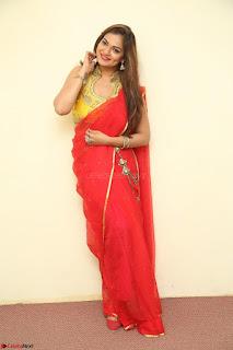 Actress Ashwini in Golden choli Red saree Spicy Pics ~  118.JPG